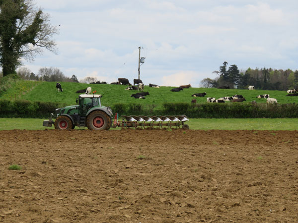 Spring work on Frogmary Green Farm